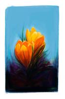 Flower Study by Shaya-Fury