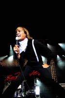 The Hives 7 by eX-Perience