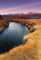 Owens River by tassanee