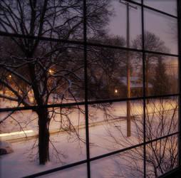 Snow by thepowerofplace
