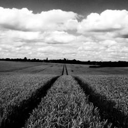 Farmer's Sorrow by Teakster