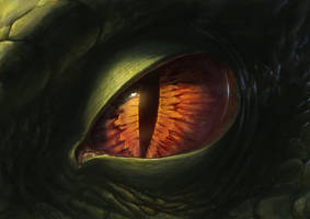 Dragon Eye 2012 by SulaMoon