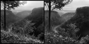 Photo Study by SulaMoon