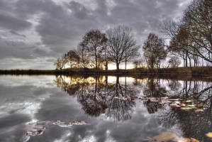 Purple Mirror by mARTinimal