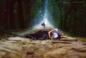 Farewell by Nazrin-Polad