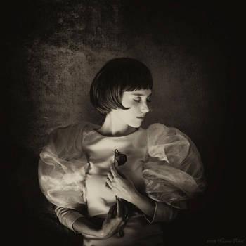 Falling memories by Nazrin-Polad