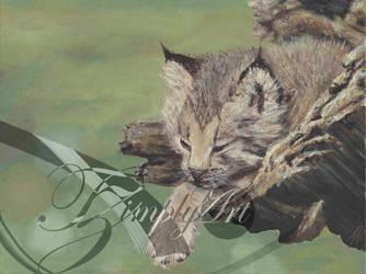 Lazy Lynx Cub by TzimplyArt