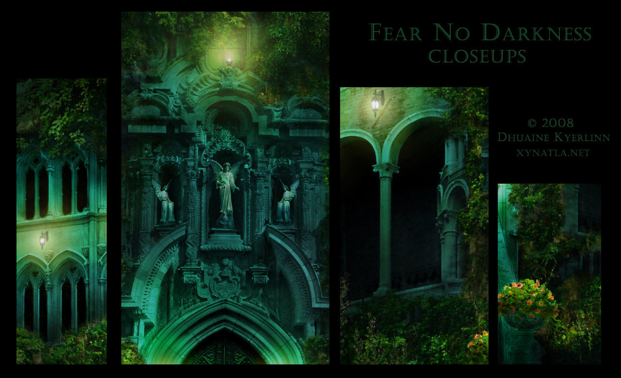 Fear No Darkness Close Ups by Dhuaine
