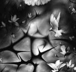 Thorns   DETAIL by AnaMariaMaxim