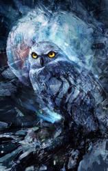 knight Owl by iVANTAO