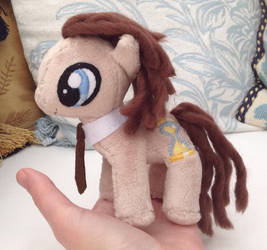 Diddy Doctor Whooves by DraglaPlushies