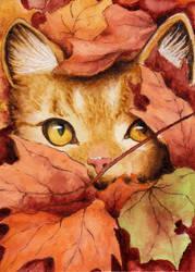 Autumn cat by Chayt