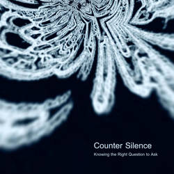 Counter Silence -Knowing The Right Question To Ask by worksteady