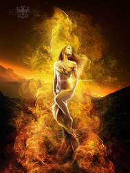 Phoenix rising by LuneBleu