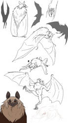 bat too by Spoonfayse