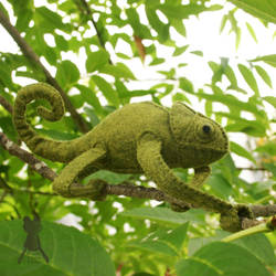 Chameleon5 by quirkandbramble