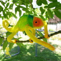 Citrus Chameleon 2 by quirkandbramble