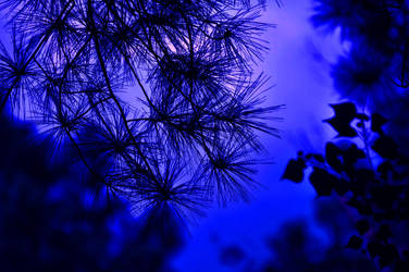 Almost Midnight by Tailgun2009