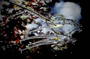Just more Ice Melting by Tailgun2009