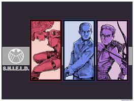 Agents of S.H.I.E.L.D. Take Two by Saturn-Kitty
