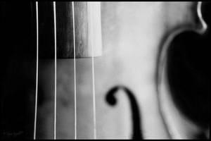 violin by soozn