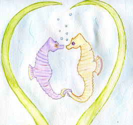 Seahorses holding tails by bamcameron