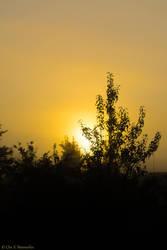 September Sunrise by cvnielsen