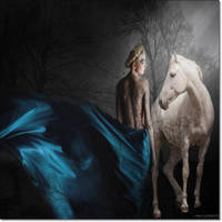 Metamorphosis ... by JamesonAnna
