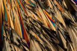 Sugarcrystal II by Kamikaye