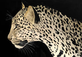 Female Leopard - Watercolor by FerrerasBS