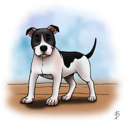 American Pitbull - Dogs Breed 01 by FerrerasBS
