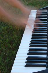 piano.hands by anarane