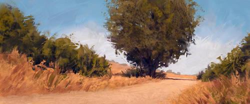 field road by iatemypencils
