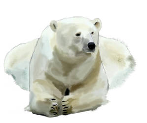 Polar Bear - Mouse Painted - WIP *1* by RRoehrig35