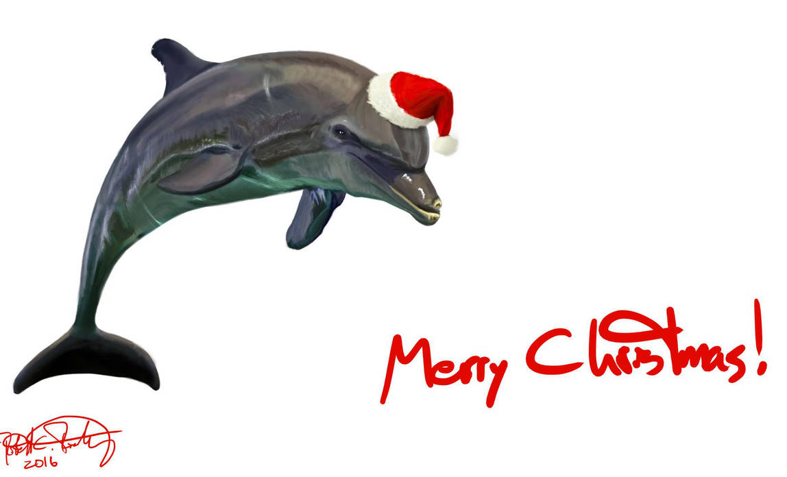 Christmas Dolphin by RRoehrig35
