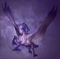 YMC - Pegasus by LhuneArt