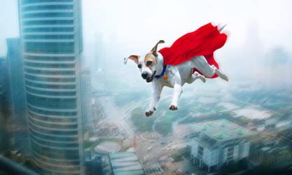 Super Dog by stargate4ever23