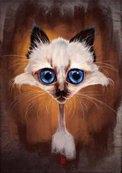 Kitten #01 by KhasisLieb