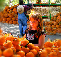 Pumpkin Time by happytimer
