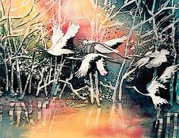 Crane's Flight by happytimer