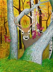 Autumn Whitetail Buck by MsMergus