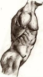 Torso Study - Side View by GymLeaderAmir