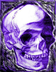 A Purple Head by GymLeaderAmir