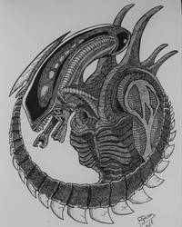 Alien Xenomorph drone by BRosa84