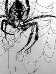 Argiope spider drawing by BRosa84