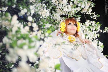 TsubasaRC: Princess by Astarohime