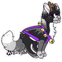 Fox? by BuckyB00