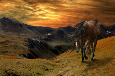 Sunset Trudge by Msdirection