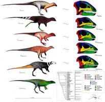 Hypsilophodontidae Evolution / Skull Comparison by Dennonyx
