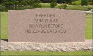 Tarantulas Tombstone by FallenAngelAerith
